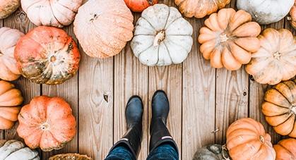 Early Fall Decor